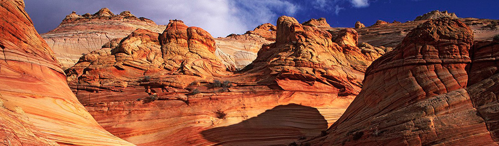 World_USA_Slick_rock_Formation___Paria_Canyon____Arizona___USA_008913_.jpg